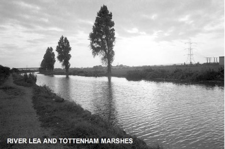 river_lea_and_tottenham_marshes.jpg (38034 bytes)